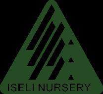 Iseli-Logo-Green-190