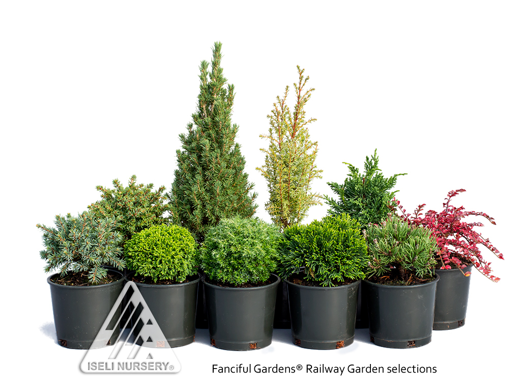 Fanciful Gardens®