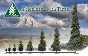 Priceless With Time