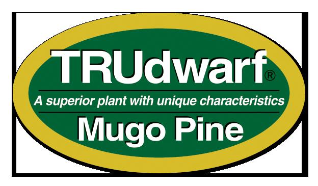 TRUdwarf Logo